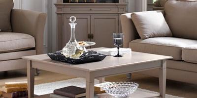 Meubler et organiser son salon mobilier canape deco for Canape maison de famille